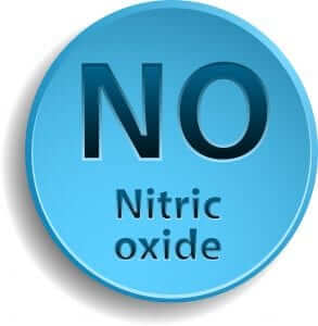 Nitric Oxide, Horse Health and Lameness