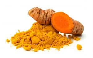 Turmeric Root, Curcumin, Absorption and Bioavailability